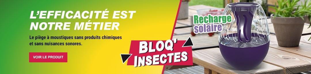 Protégez votre maison des insectes volants et rampants